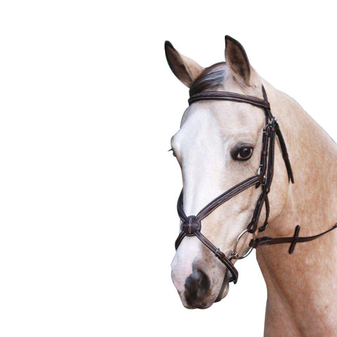 Leather Grackle Bridle