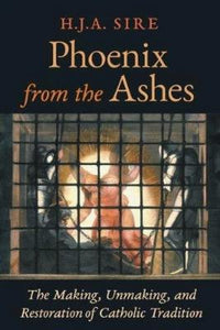 Phoenix from the Ashes - Tumblar House