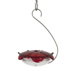 Ruby Sipper Hanging Hummingbird Feeder Clear