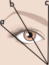getting your eyebrows in order