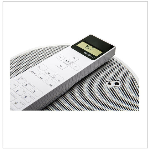 In Ceiling Speakers With Remote Control