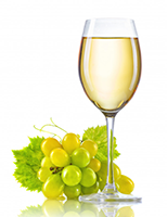 GRILLO  – WHITE  GRAPE AND  WHITE WINE