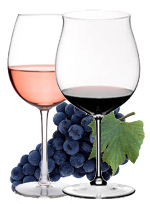 SANGIOVESE  – RED GRAPE FOR RED AND ROSE' WINES