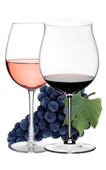 CANAIOLO  – RED GRAPE FOR RED AND ROSE' WINES