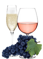 RABOSO  –  RED GRAPE FOR ROSE' AND SPARKLING WINE