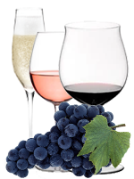 PINOT WINE  –  RED GRAPE FOR WHITE, ROSE' AND SPARKLING WINE