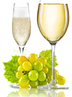 MOSCATO BIANCO  – WHITE GRAPE – WHITE AND SPARKLING WINES