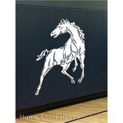Gymnasium Sports Wall Padding