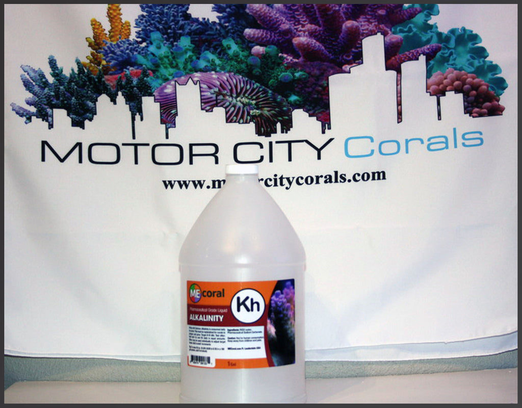 MECoral 1 Gallon Alkalinity Liquid Solution