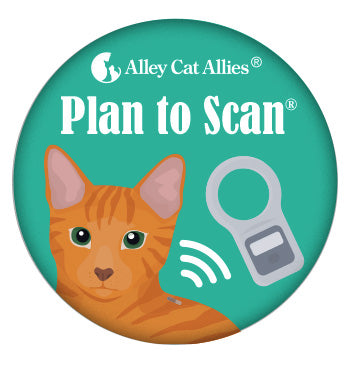 Plan to Scan Button (5 pack)