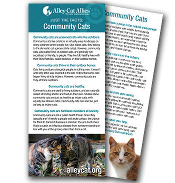 JUST THE FACTS: Community Cats