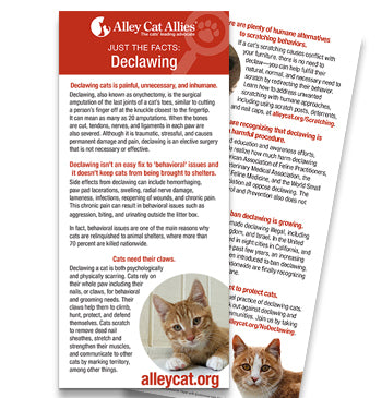 JUST THE FACTS: Declawing