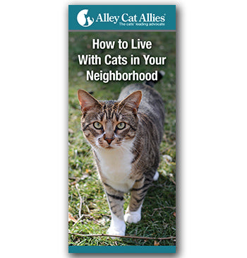 How to Live With Cats in Your Neighborhood