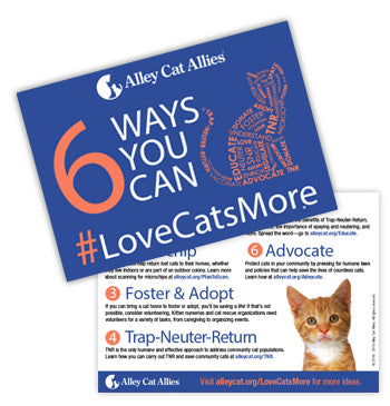 6 Ways to #LoveCatsMore Postcard (5 pack)