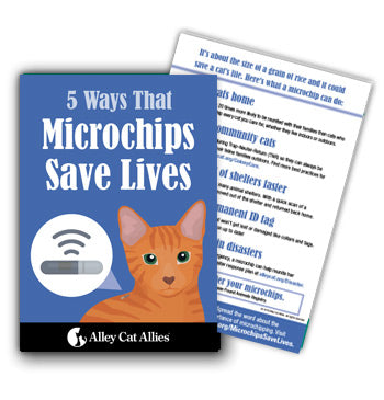 Microchips Save Lives Postcard (5 pack)