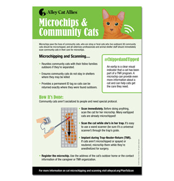 Microchips & Community Cats Poster