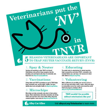 NEW! Vets Put the 'NV' in TNVR Postcard