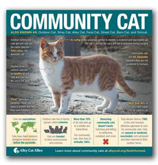 Global Cat Day Tabling Bundle