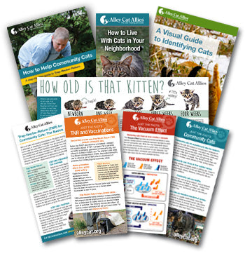Helping Cats in Your Community Workshop Bundle