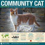 Community Cat Caregiver Bundle