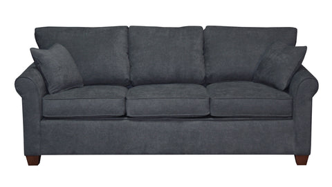 Non-toxic Douglas Queen Condo Sleeper, Sofas - Endicott Home Furnishings - 1
