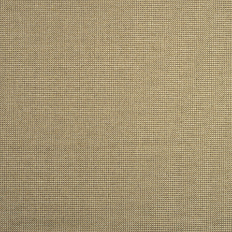 Endeavor Desert - Fabric Swatch
