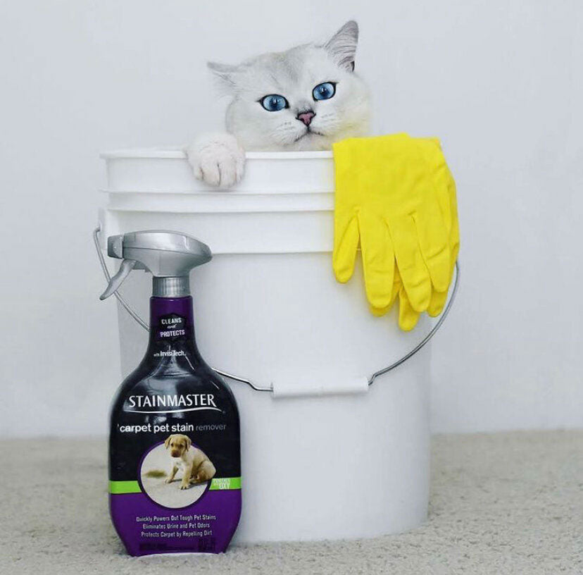 Items toxic to Pets