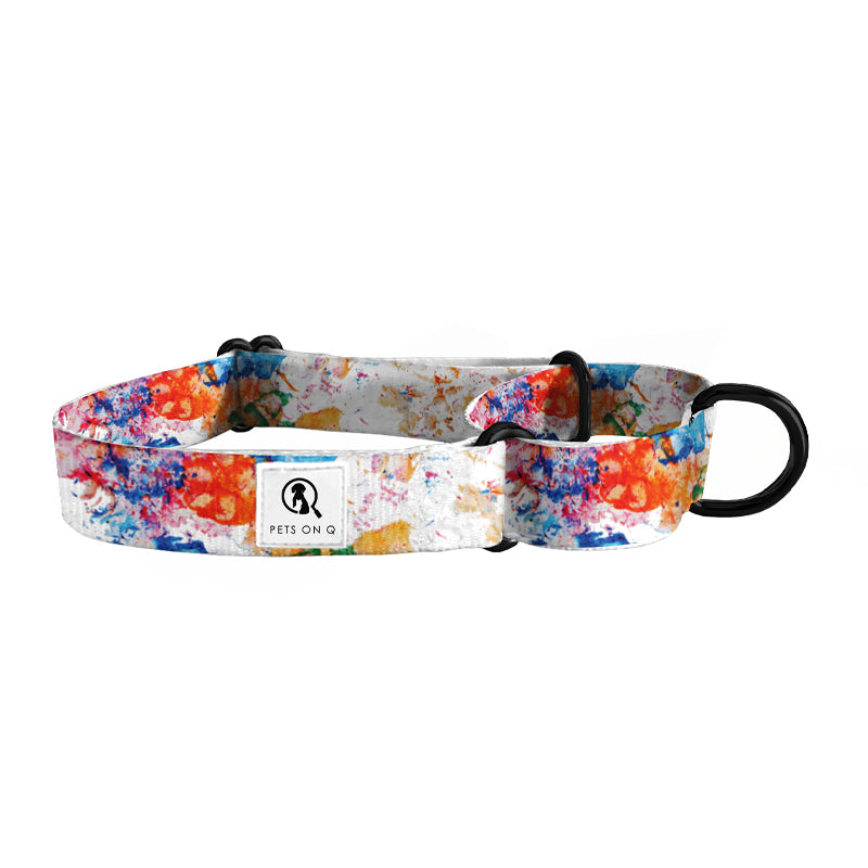Painted Paws Dog Martingale