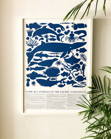 Sea Animals of the Pacific Northwest Poster