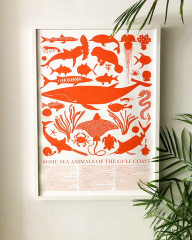 Sea Animals of the Gulf Coast Poster