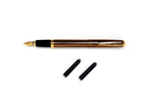 Ohto Celsus Fountain Pen - Brown