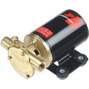 JOHNSON PUMP F3B-19 Oil Change 24 Volt