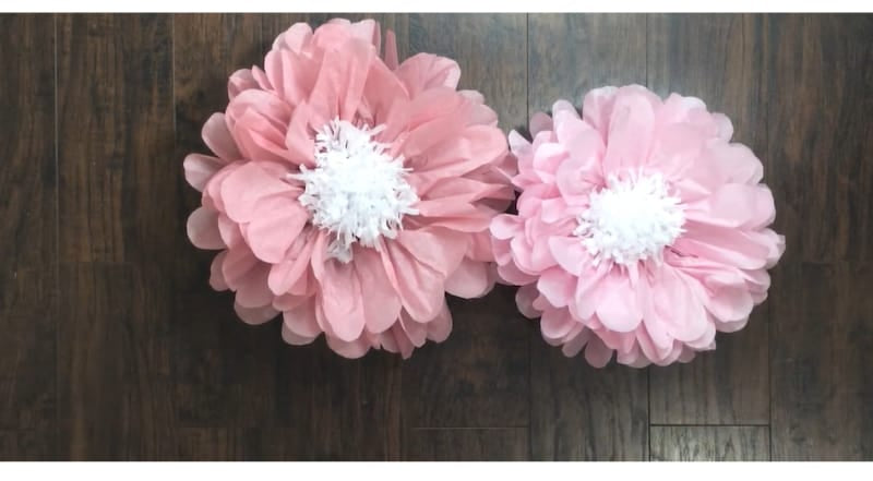 Double cosmos flower made from tissue paper