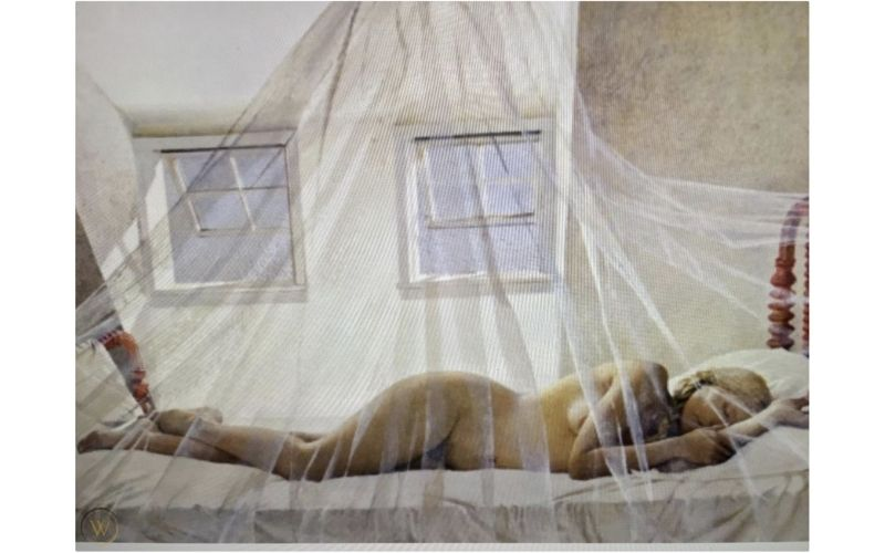 Daydream from the Helga Paintings by Andrew Wyeth