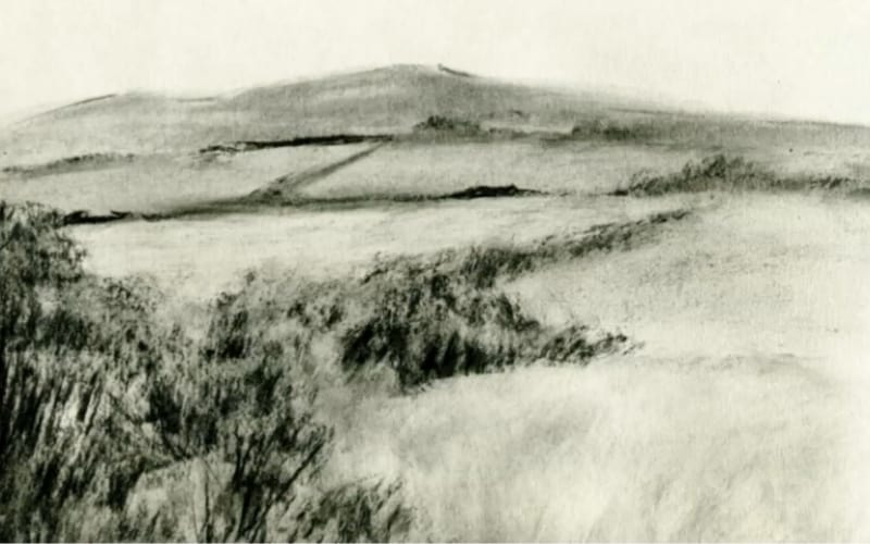 An impressionist charcoal drawing of a field - Image by Paul O'Neill