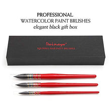 Load image into Gallery viewer, Dainayw Professional Watercolor Paint Brushes, Mop Round Squirrel Hair Paint Brush Set for Art Painting, Gouache, Artist Quality Supplies Red Handle (3 Brushes)