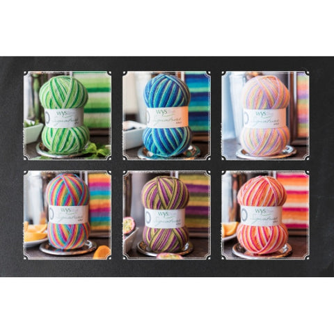 West Yorkshire Spinners Signature 4 Ply - Cocktail Range