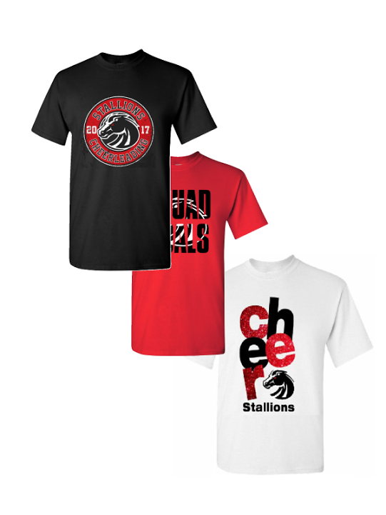 Lake County Stallions T-Shirt Package