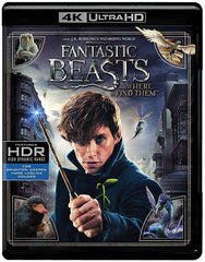 Animales Fantasticos Y Donde Encontrarlos Blu-Ray 4K Ultra HD + Blu-Ray