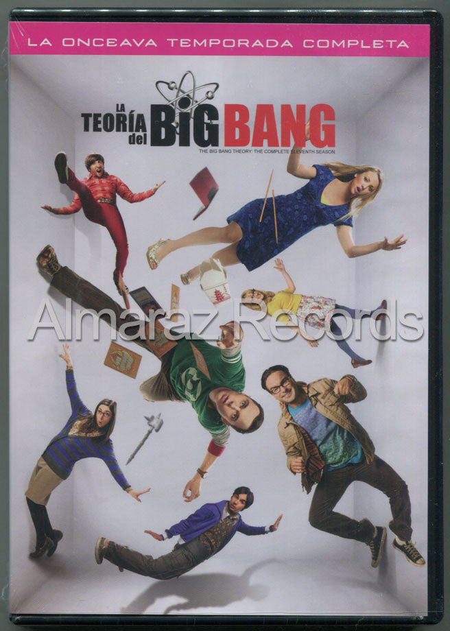 La Teoria Del Big Bang Temporada 11 DVD