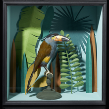 Afbeelding in Gallery-weergave laden, Selection of Taxidermy Toucans in Designer Display Cases.