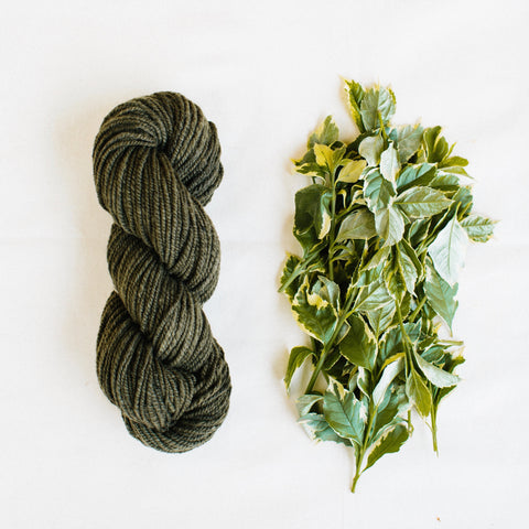 Organic Merino Wool Yarn - Rich Topiary