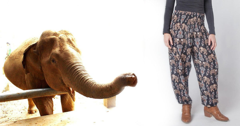 Dani The Elephant : The Story Behind Our Latest Pattern