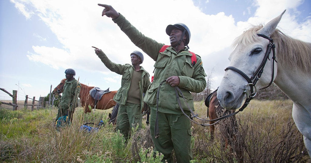 These Horse-Mounted Patrolmen Are Keeping Elephants Alive