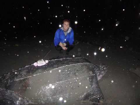 Lexie with a leatherback sea turtle in Panama.