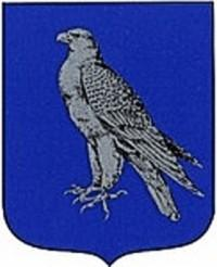 iceland old coat of arms with falcon