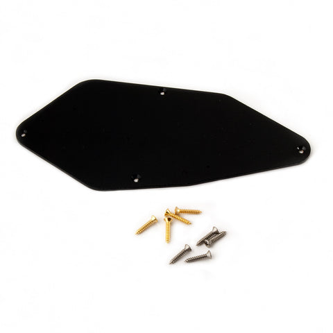 Electronics Backplate - 509/513/305 models