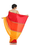 Tri-Color saree with Arrow Embroidery