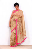 Gold Zari Work Saree with a Pink Border