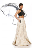 Beige Chevron & Black Skirt Top With Dupatta